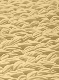 view woven knots rug | product 1-27